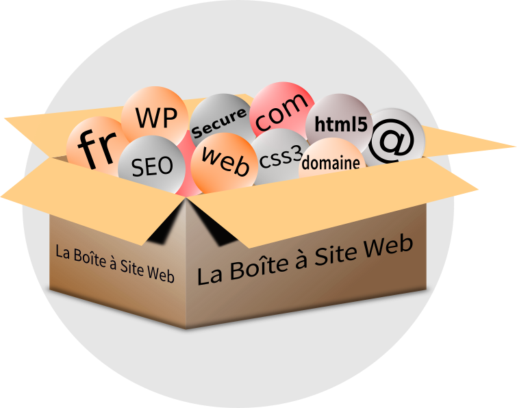 icone la Boîte à Site Web